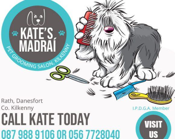 KATES MADRAI260619 (2)
